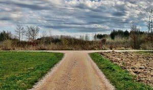 split pathway